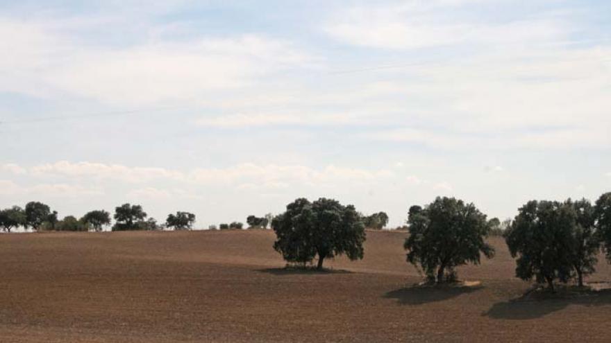 Senda de Boadilla del Monte a Villanueva de la Cañada - R21