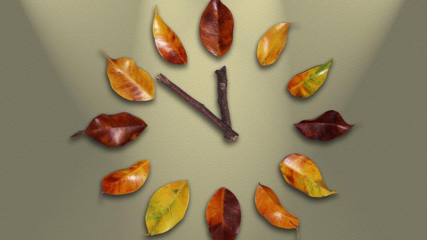 Reloj de hojas
