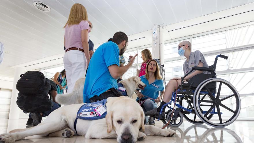 La interacción con animales tiene importantes beneficios físicos y anímicos para los pacientes pediátricos