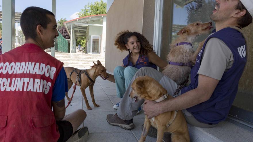 Carlos Izquierdo visita hoy el Centro Integral de Acogida de Animales (CIAAM) en Colmenar Viejo