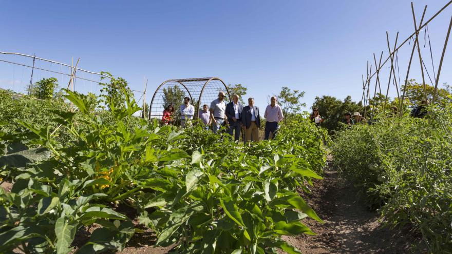 Visita a los laboratorios de agricultura participativa en El Escorial
