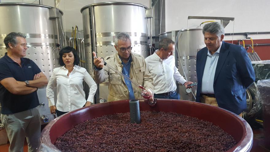 Izquierdo entrega el sello 'M Producto Certificado' a la bodega Viñadores de Valdeiglesias