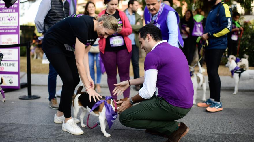 Aguado y Martín acarician a un perro en la carrera 'Perrotón Madrid 2019'