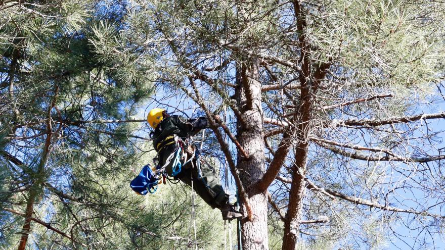 La Comunidad de Madrid incrementa un 57 % el presupuesto de los agentes forestales en 2019