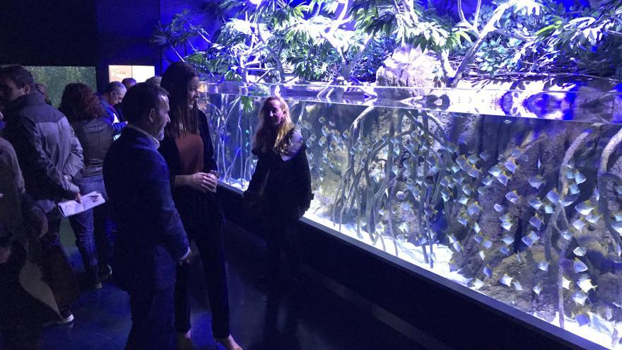 Lola Moreno en el parque Atlantis Aquarium