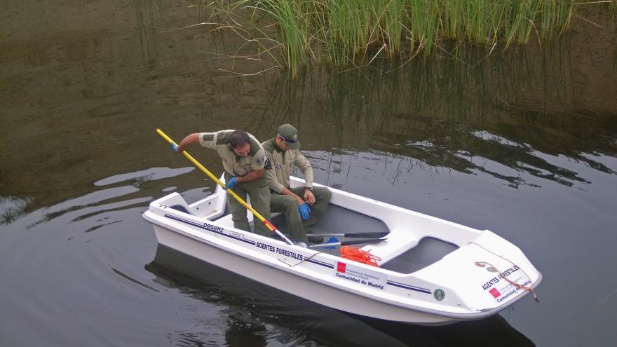 Imagen de agentes forestales en una embarcación.