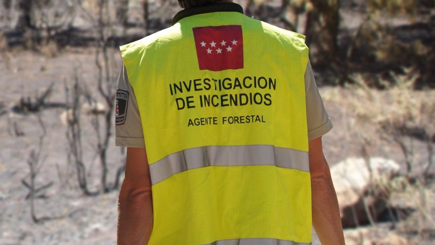 Imagen de agentes forestales investigando un incendio