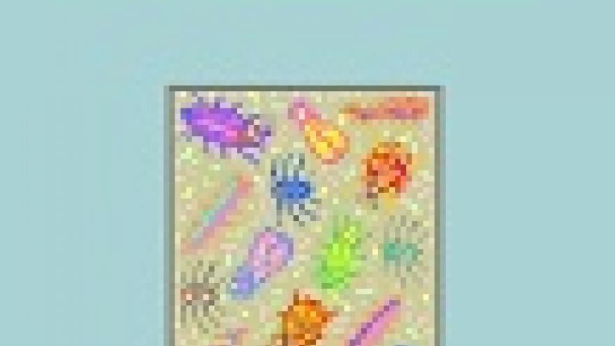 Portada de la publicación Guía Informativa sobre el Registro de Establecimientos y Servicios Biocidas (2ª edición)