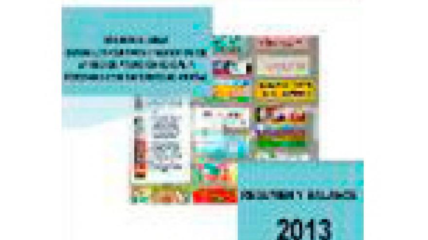 Portada Balance 2013