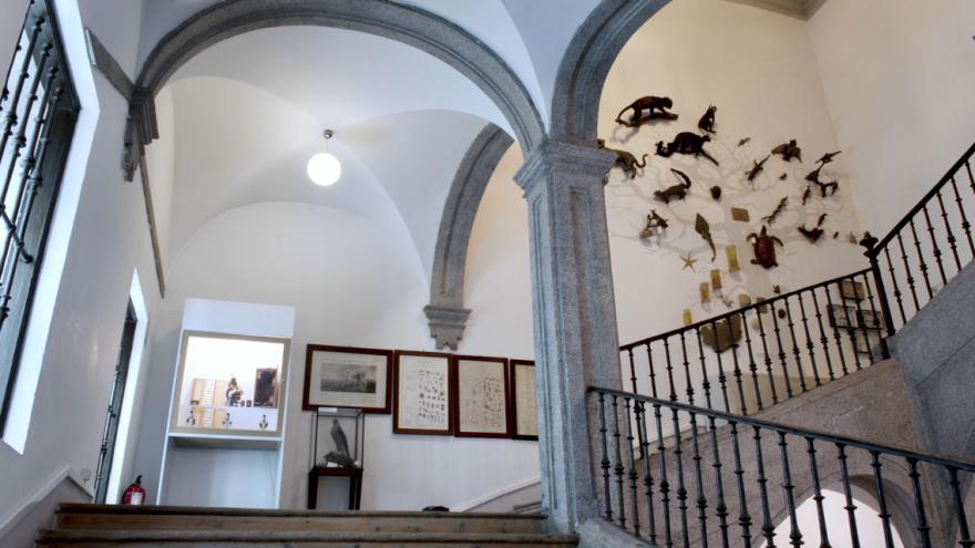 Exhibición y montaje yVista general de la escalera