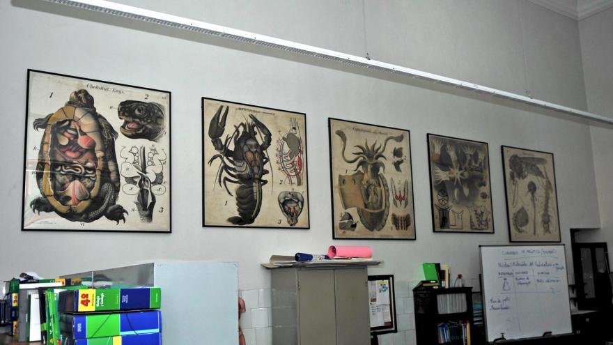 El Laboratorio de Ciencias Naturales con Láminas explicativas