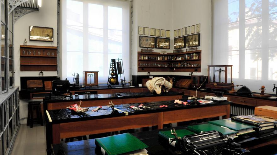 El Gabinete de Historia Natural tercera sala