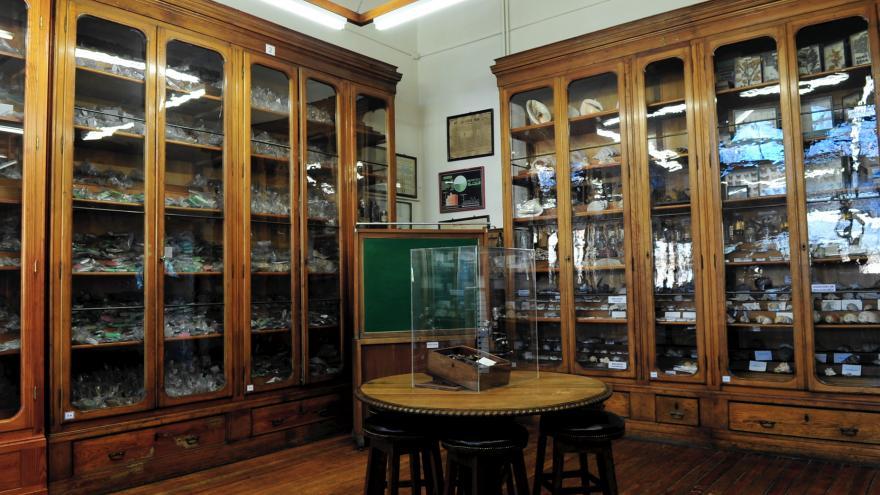 El Gabinete de Historia Natural segunda sala