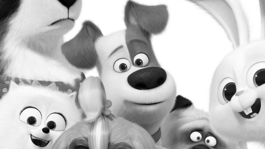 imagen de varios animales de la película mascotas 2