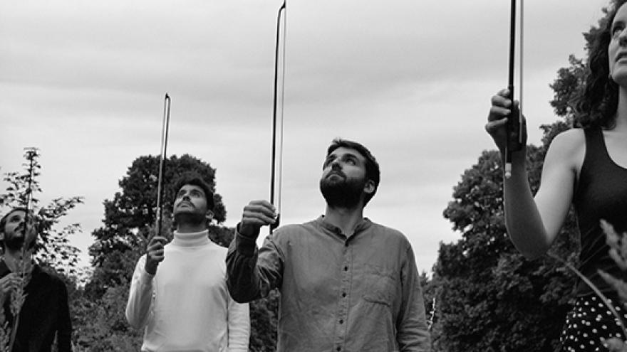 Foto de Protean Quartet