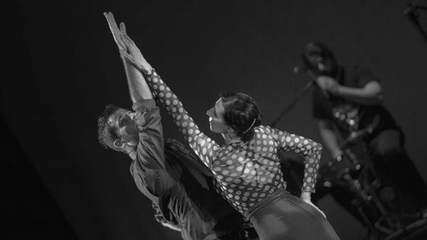 imagen en la que se ve a dos bailaores cogiéndose la mano en el escenario