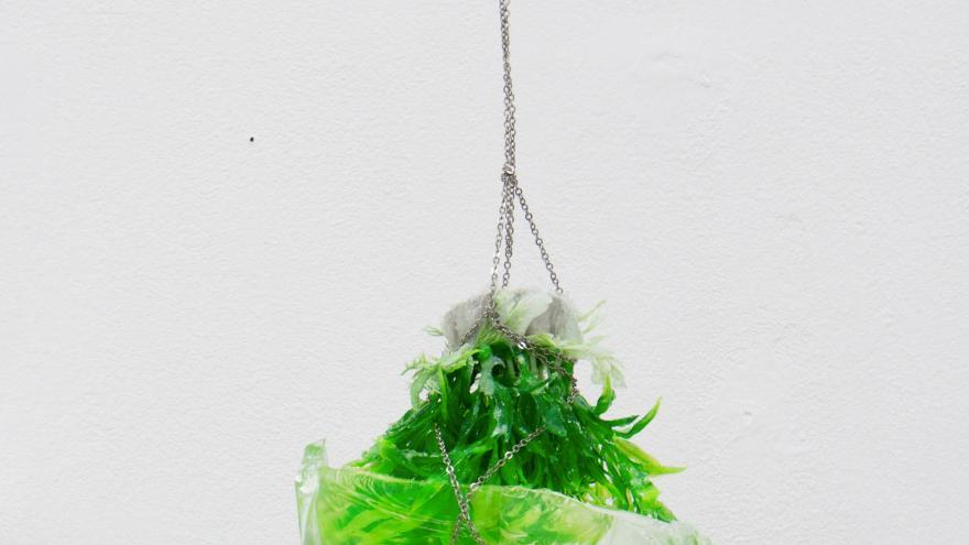 Objeto colgante formado por vegetales sobre una bolsa de plástico