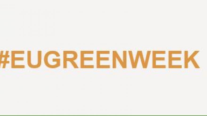Semana Verde 2019