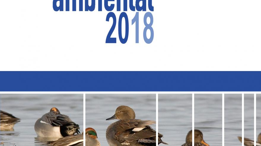 Diagnóstico ambiental 2018