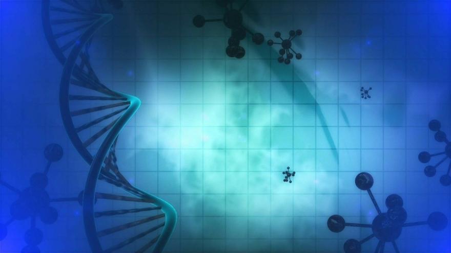 Más de 150 pacientes atendidos en la Unidad de Enfermedades Autoinmunes del Hospital de Móstoles