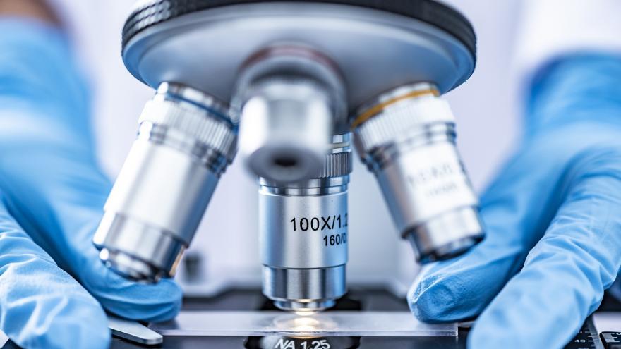 Unas manos colocan una muestra en el microscopio