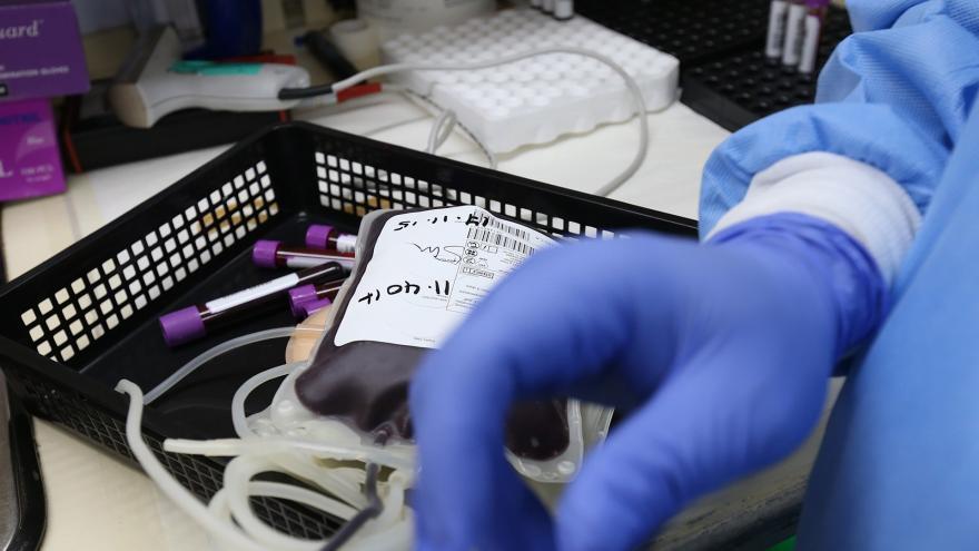 Bandeja con bolsa de sangre y tubos de ensayo