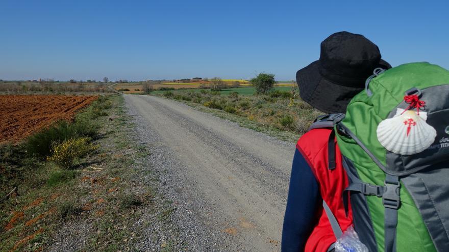 Un peregrino por el Camino de Santiago