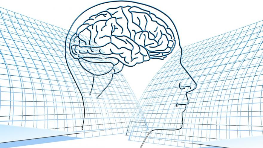 Silueta de un cerebro humano