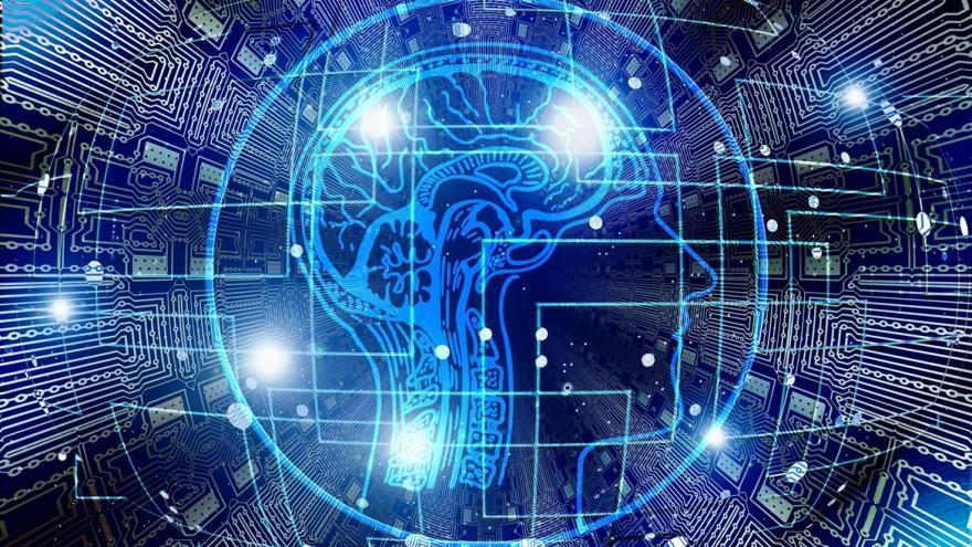 imagen de cerebro