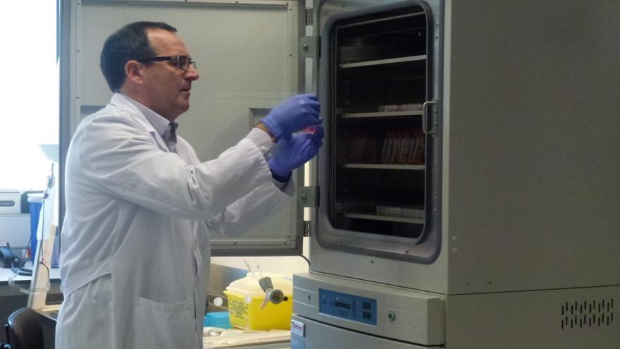 El doctor Rafael Delgado, del Hospital 12 de Octubre, observa una muestra en el Laboratorio