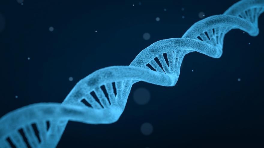 Cadena genética