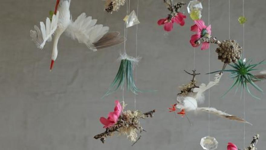 Imagen decorativa