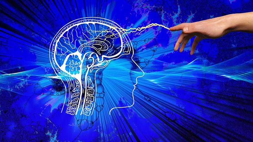 IMAGEN NEUROLOGÍA