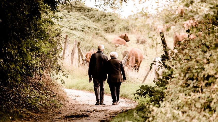 Pareja de personas mayores de espaldas, caminando por el campo