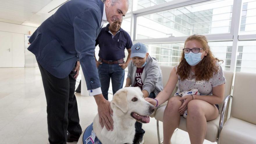 La terapia con perros es beneficiosa para los niños ingresados en los hospitales
