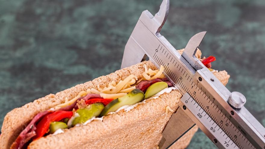 Imagen de un sandwich de dieta
