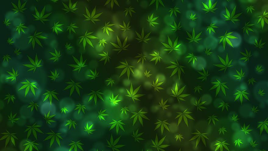 Riesgos asociados al consumo de cannabis