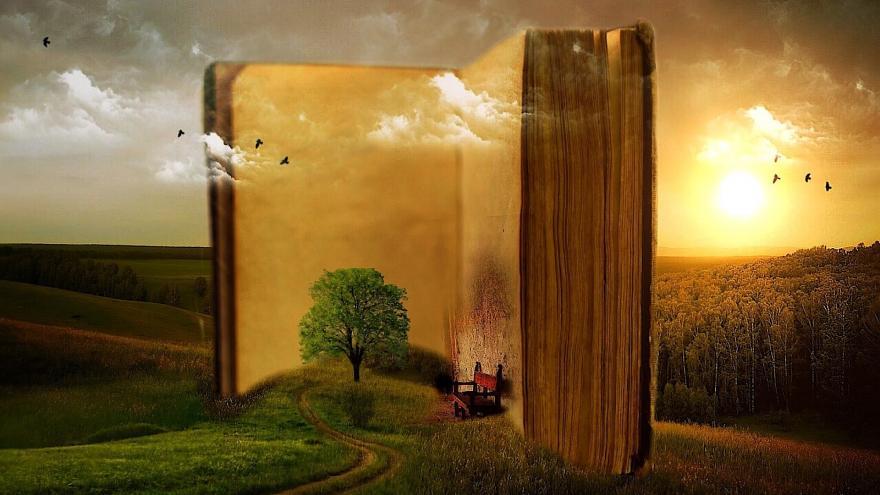 Imagen de un libro abierto apoyado en un prado con un árbol y un banco