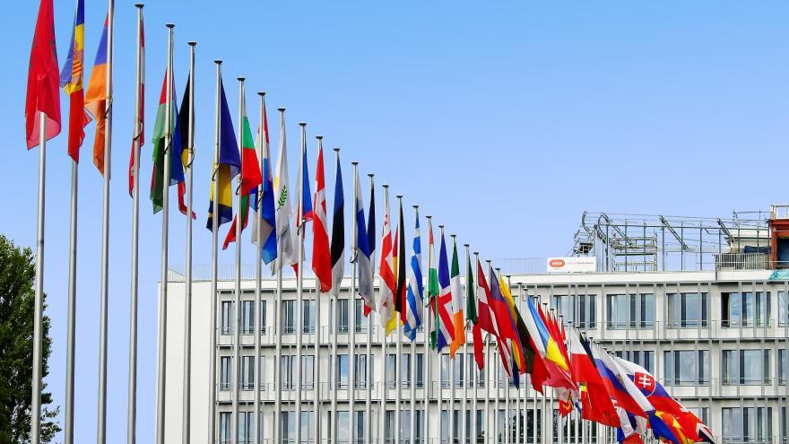 Proyectos europeos e internacionales