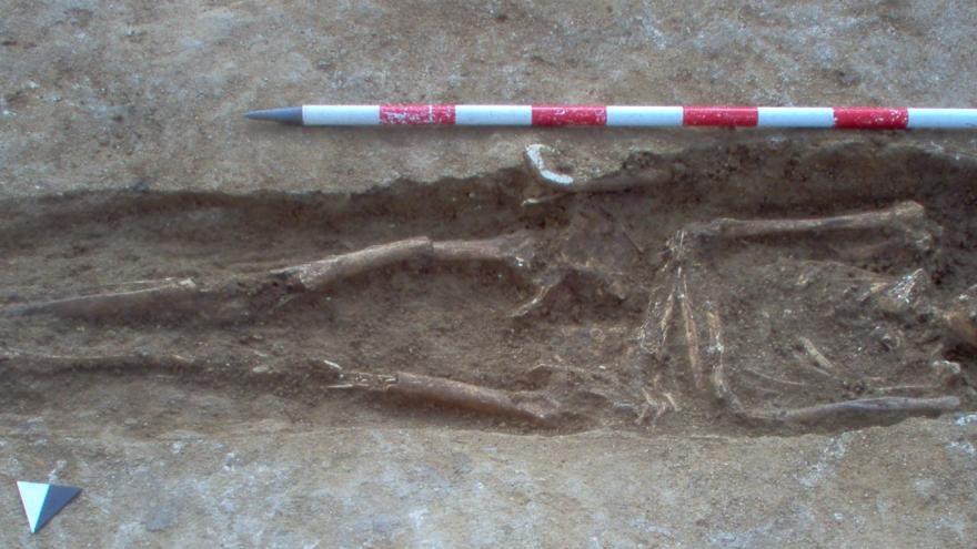 Imagen de restos encontrados en el Monte de la Villa