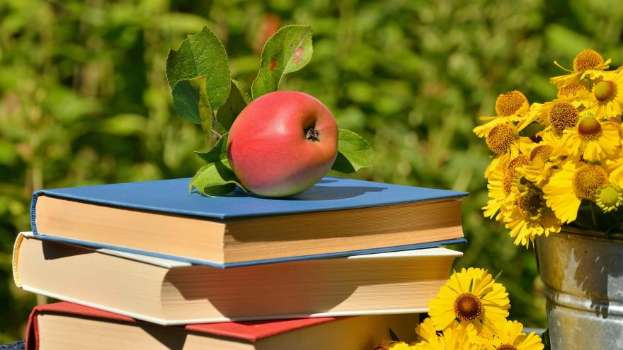 Manzana sobre unos libros