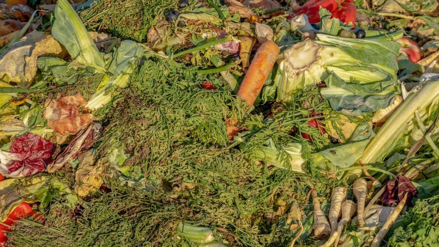 Imagen desperdicios alimentos