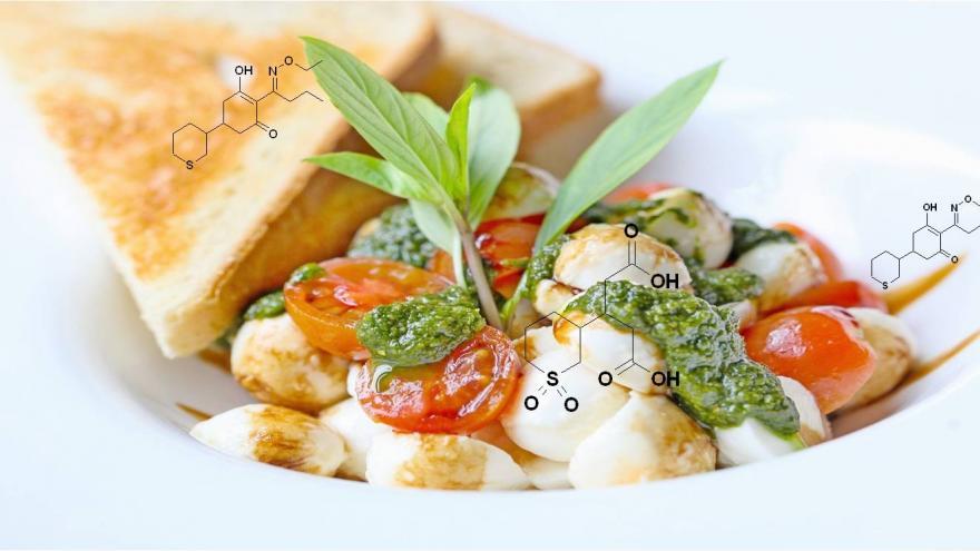 Sandwich con fórmulas de sustancias químicas