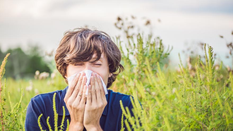 Una chica joven estornudando y tapandose con un pañuelo
