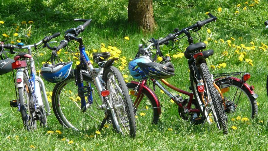Bicicletas tumbadas sobre hierba