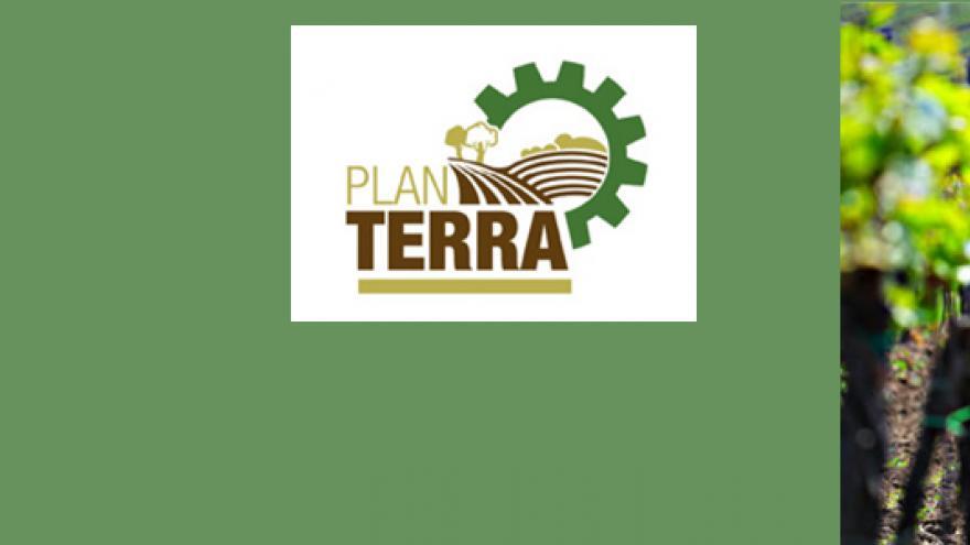 Imagen ilustrativa del Plan Terra: logo y viñedos