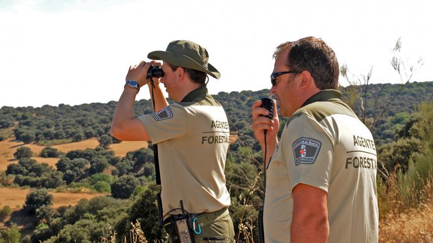 Agentes forestales de la Comunidad de Madrid