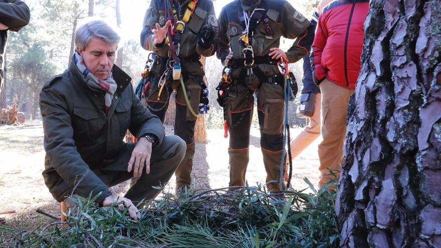 Cuerpo de Agentes Forestales de la Comunidad de Madrid