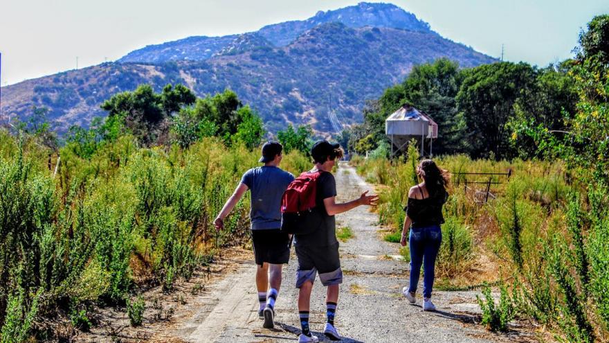 Grupo de jóvenes caminando por la sierra