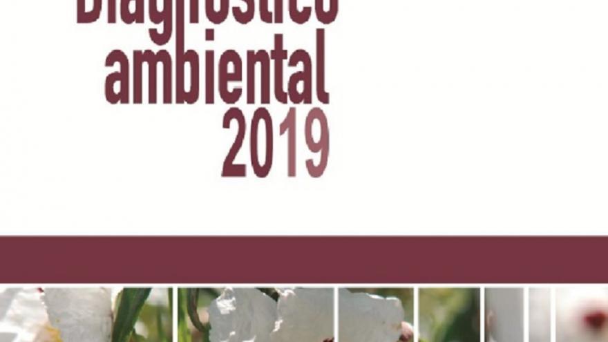 Recorte diagnóstico ambiental 2019
